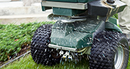 Lawn Fertilization & Weed Control